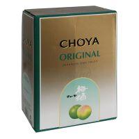 Japonské slivkové víno Umeshu CHOYA 5 L